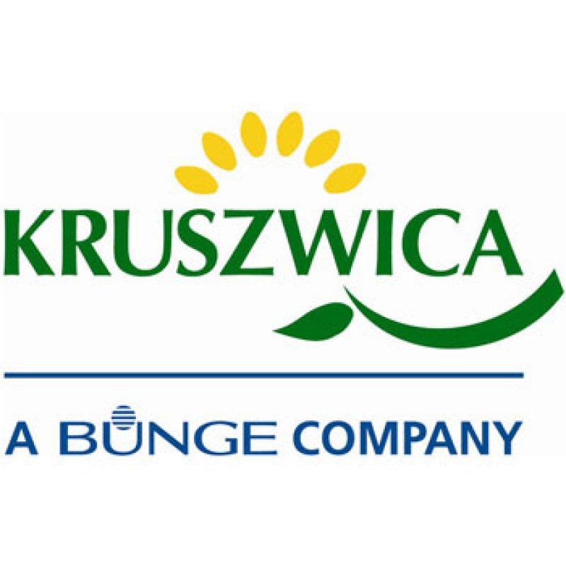 kruszwica-1