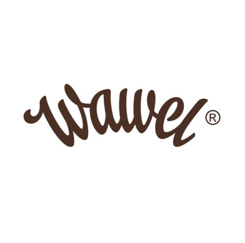 logo_wawel